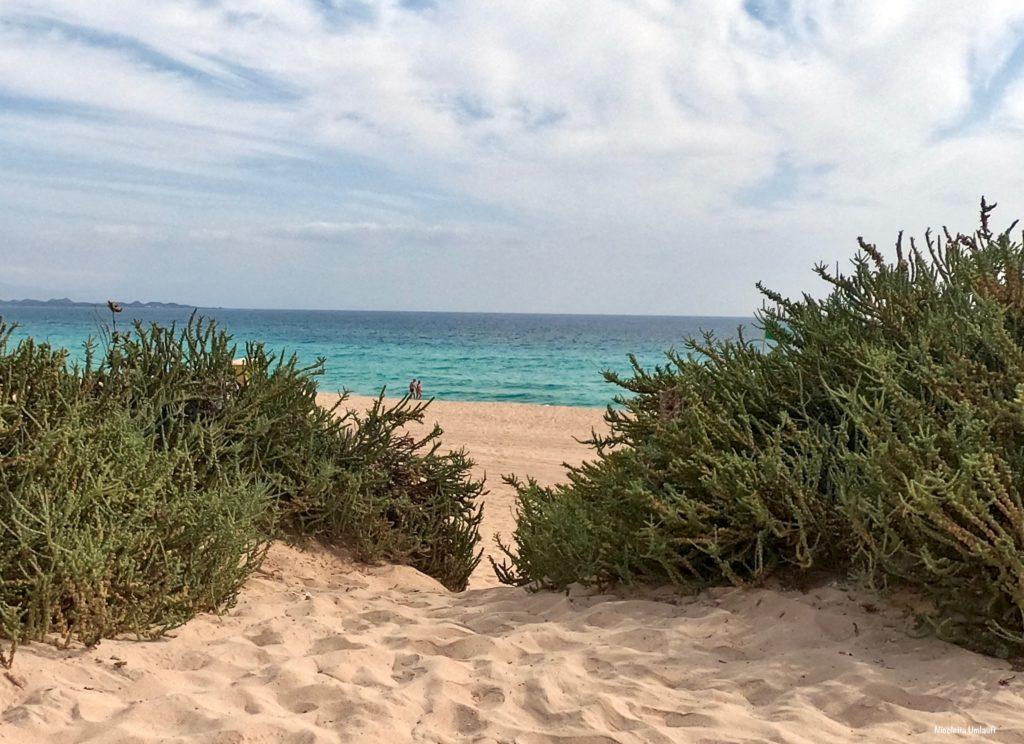 dune-di-corraleyo