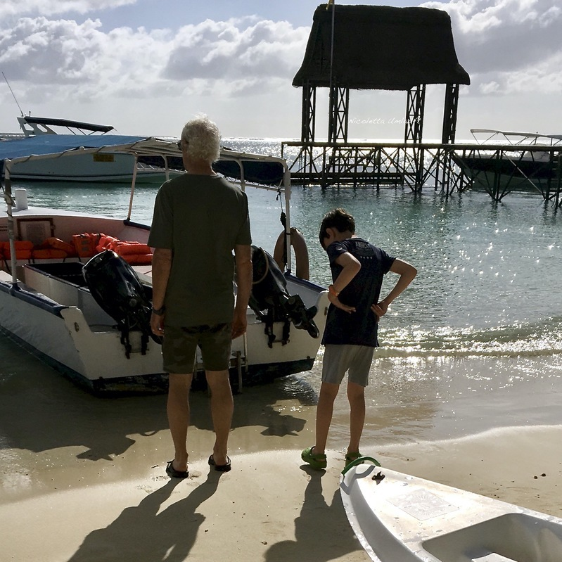 Glass bottom boat Trou aux Biches