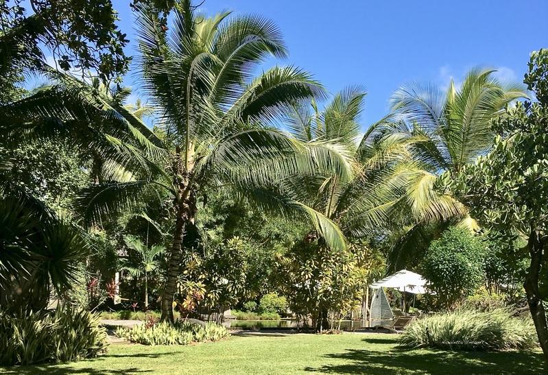 Tropical garden Trou aux Biches