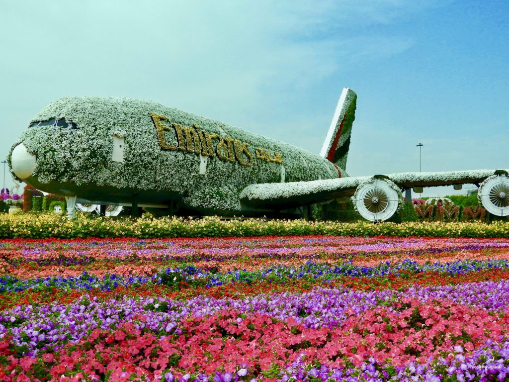 Emirates A380 at the Miracle Garden