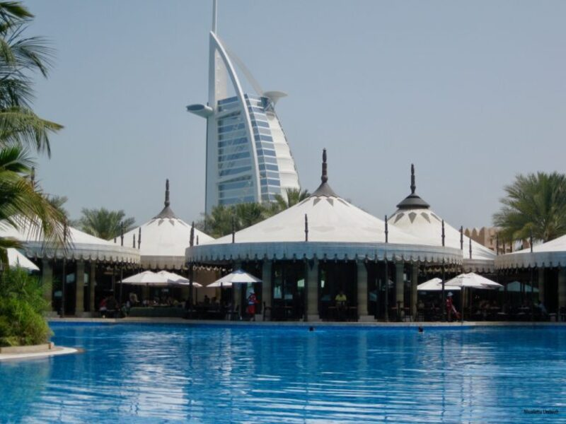 Al Qsar the pool surrounded by greenery